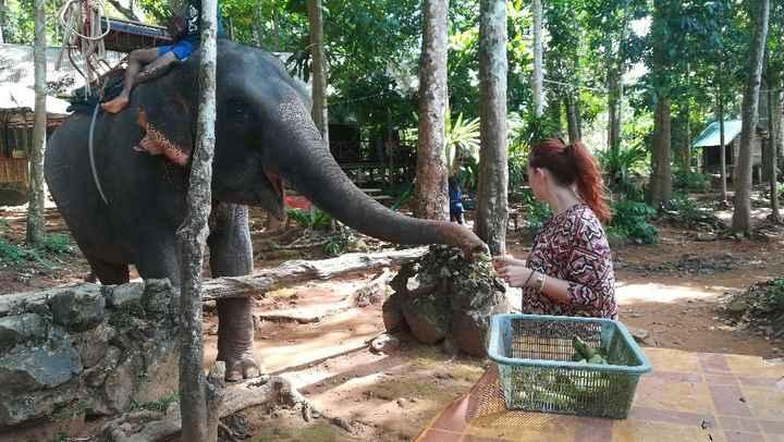 Thailandia - 5