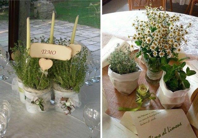 Matrimonio Tema Erbe Aromatiche : Tema matrimonio organizzazione forum