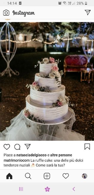 Parliamo di torte 1