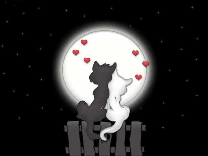 L'amore.....