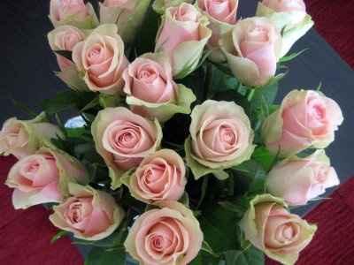 Rose...rose e ancora rose....come le amo io rosa antico!!!