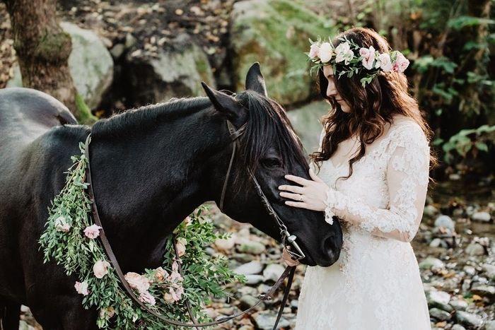 Meglio il servizio fotografico prematrimoniale o postmatrimoniale? 4