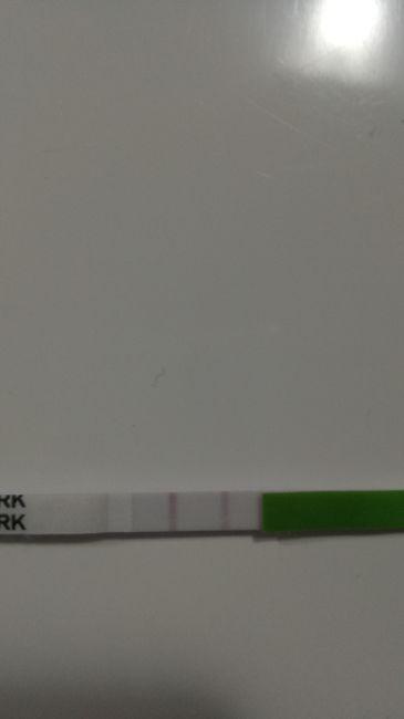 Test ovulazione - 1