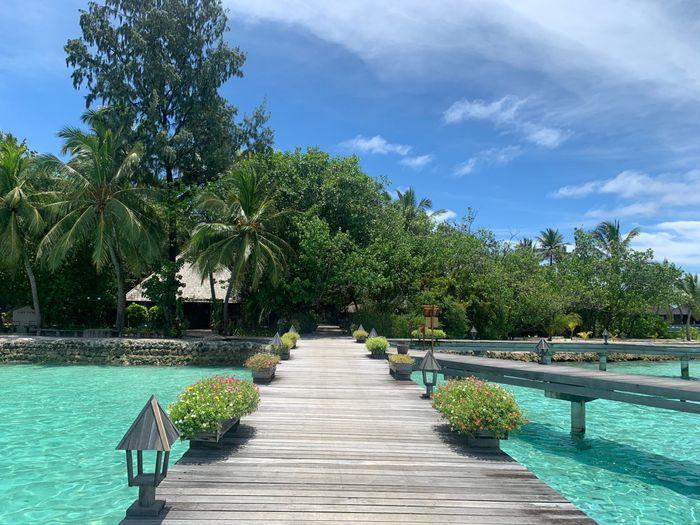 Viaggio alle Maldive 😍😍 1
