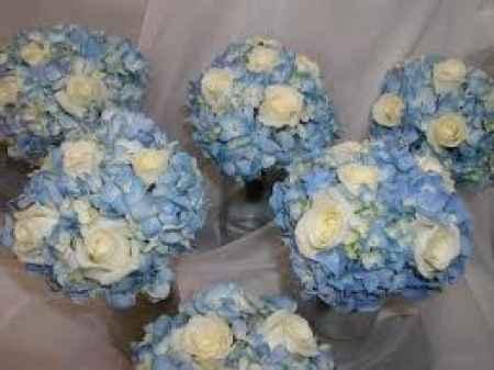 Matrimonio in azzurro,