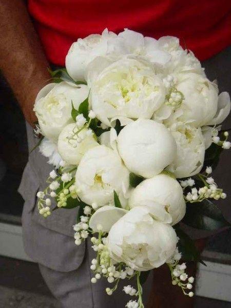 Ad agosto che fiori scegliere forum for Fiori di agosto