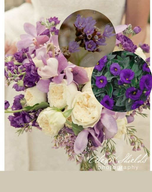 In crisi per il Bouquet 2