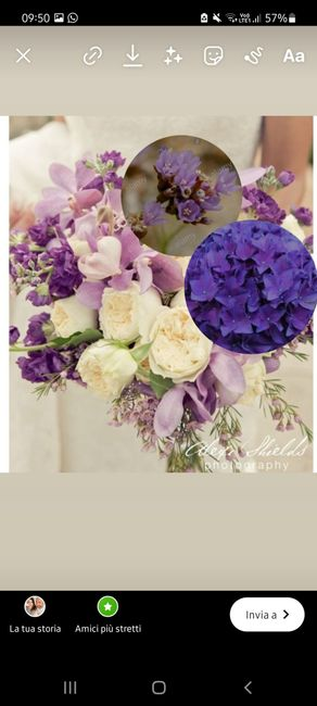 In crisi per il Bouquet 3