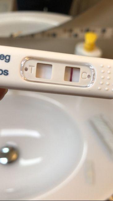 Risultato test gravidanza - 1