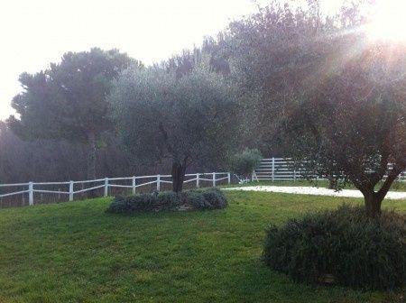 giardino 2