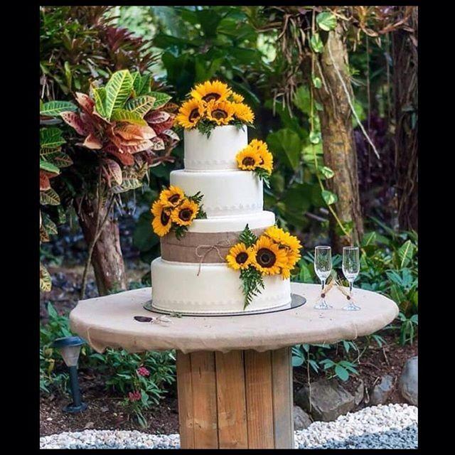 Girasole Matrimonio Significato : Torta girasole foto organizzazione matrimonio