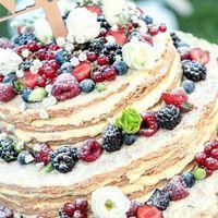 fac simile torta