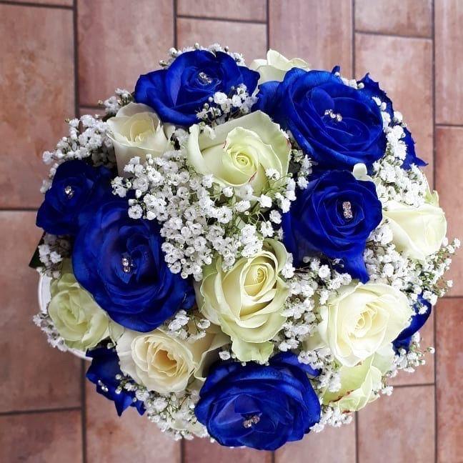 Pantone blu 🌈 - 1