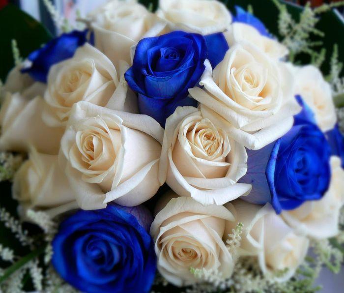 Tema del matrimonio Rosso-bianco-blu - 2