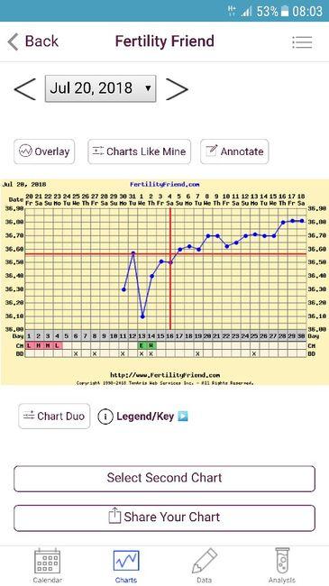Grafico! Quanto vorrei fosse vero 😍 - 1