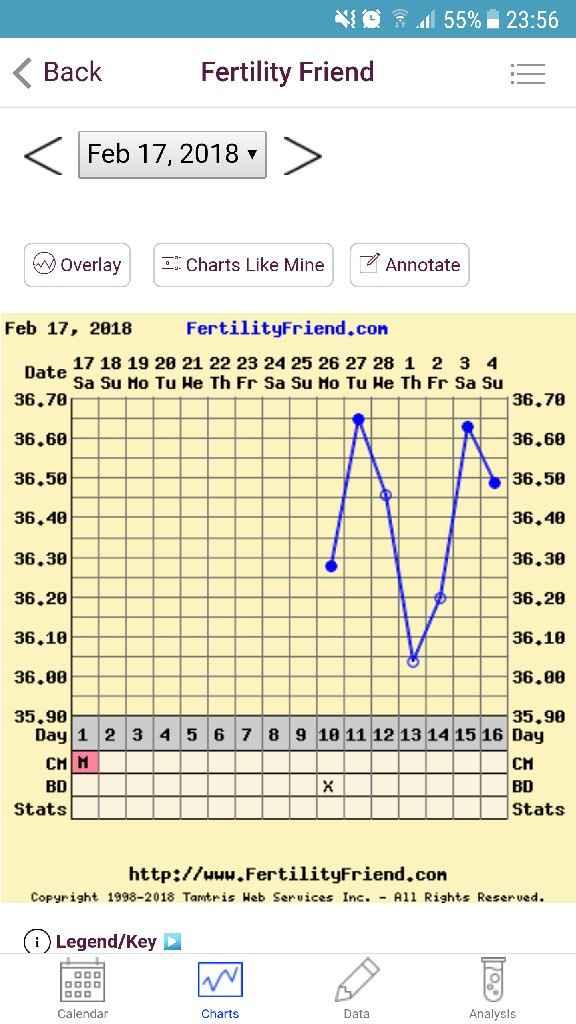 Grafico temperatura prima volta aiutoo - 1