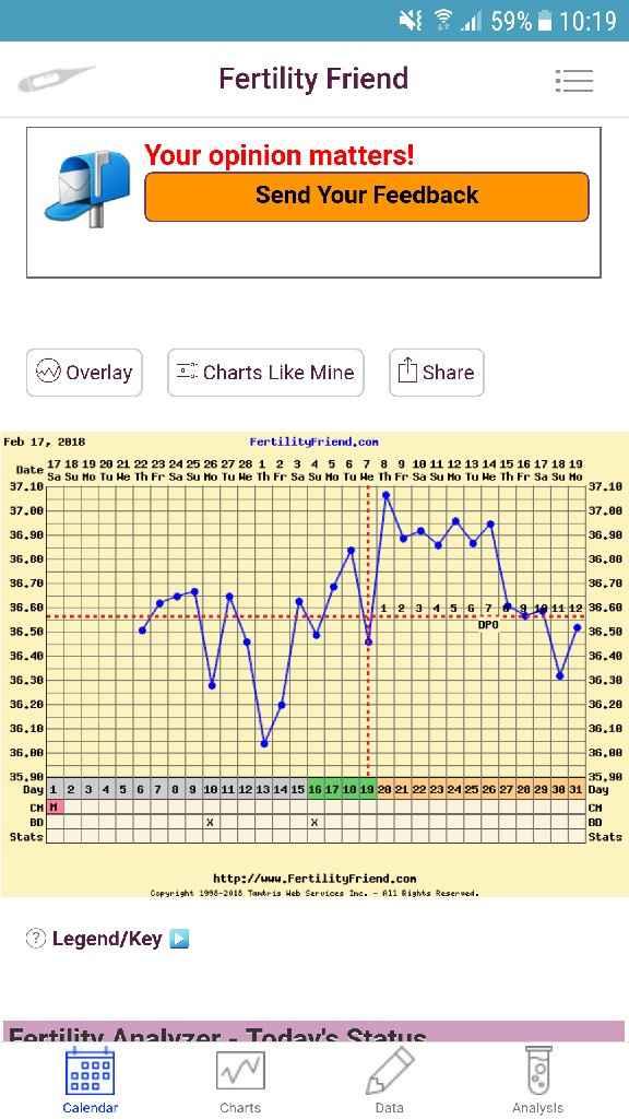 Grafico temperatura basale - 1