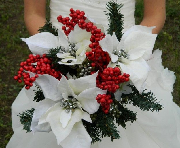 Stella Di Natale Bianca.Fiori Per Dicembre Ricevimento Di Nozze Forum Matrimonio Com