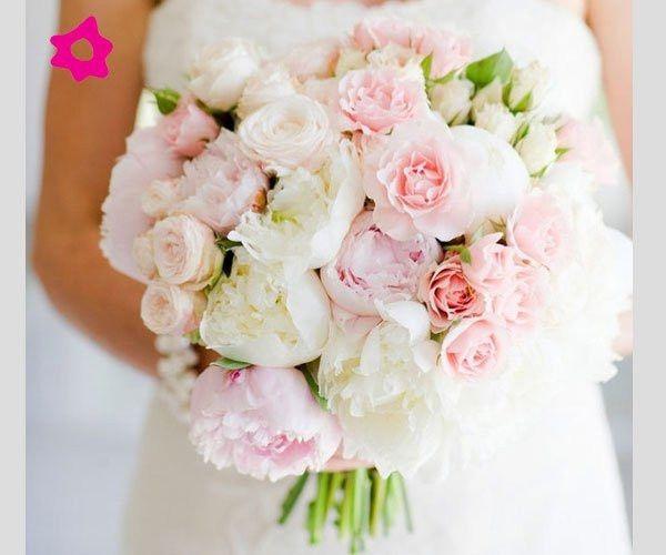 Matrimonio Tema Rose : Colore tema organizzazione matrimonio forum