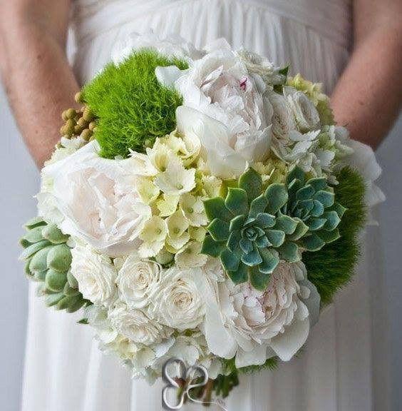 Bouquet piante grasse - Moda nozze - Forum Matrimonio.com