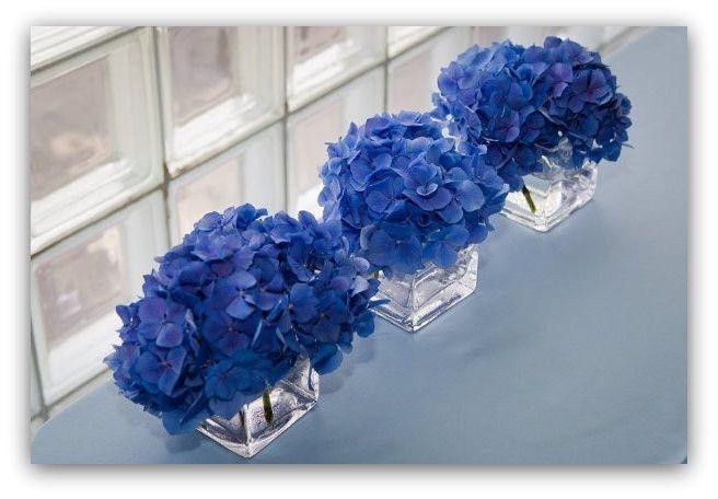 Centrotavola Ortensie Bianche : Centrotavola azzurri ricevimento di nozze forum