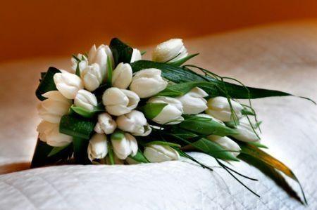 Bouquet Di Tulipani Per Sposa.Bouquet Di Tulipani A Settembre Organizzazione Matrimonio