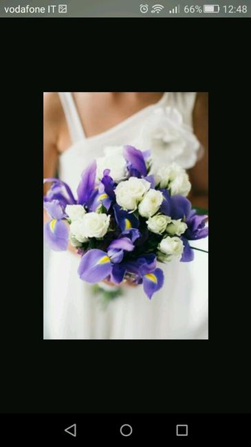 Bouquet Sposa Iris.Friday Flowers Irises Someday And Forever Bouquet Sposa