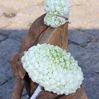 il bouquet k sogno