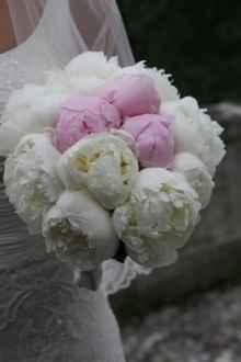i fiori....
