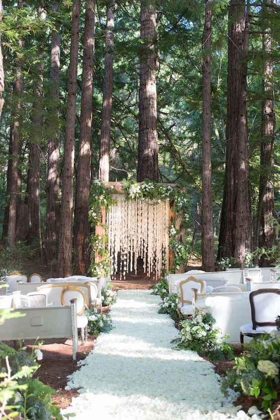 Matrimonio nel bosco - 1