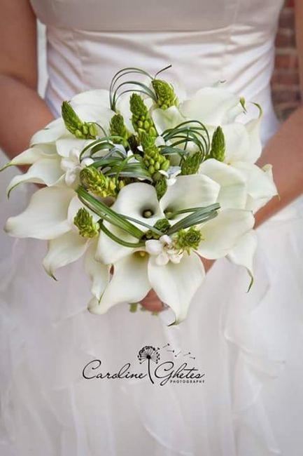 Matrimonio In Verde : Matrimonio in verde foto organizzazione