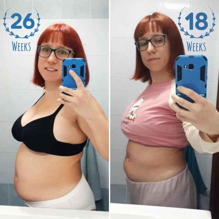 Confronto 18 e 26 settimane