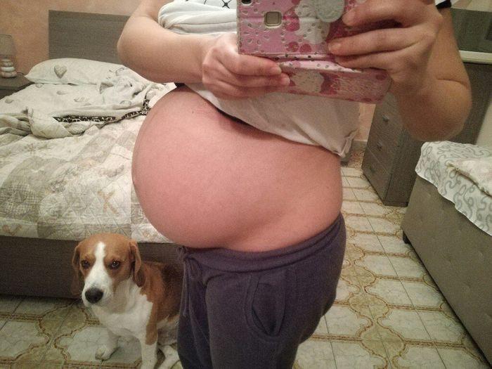Pancione 36 settimane - 1