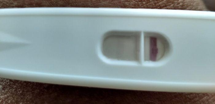 Test di gravidanza si o no 1