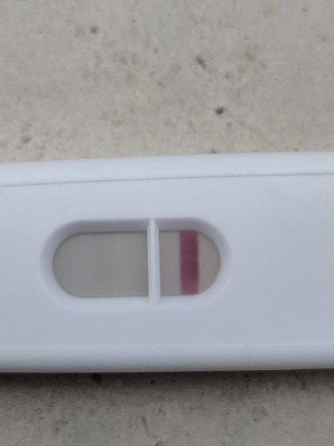 Test di gravidanza si o no 2