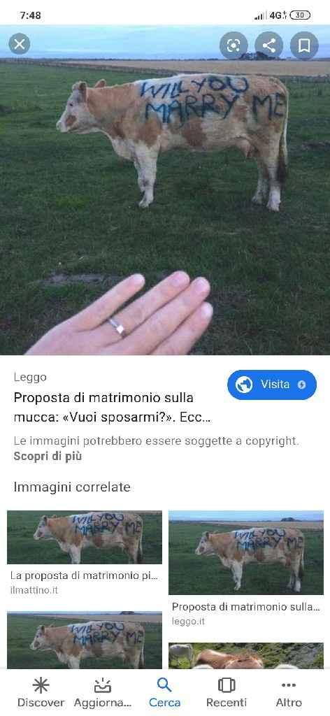 Una proposta di matrimonio esclusiva! - 1