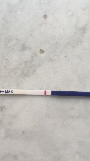Test ovulazione vs test gravidanza 2