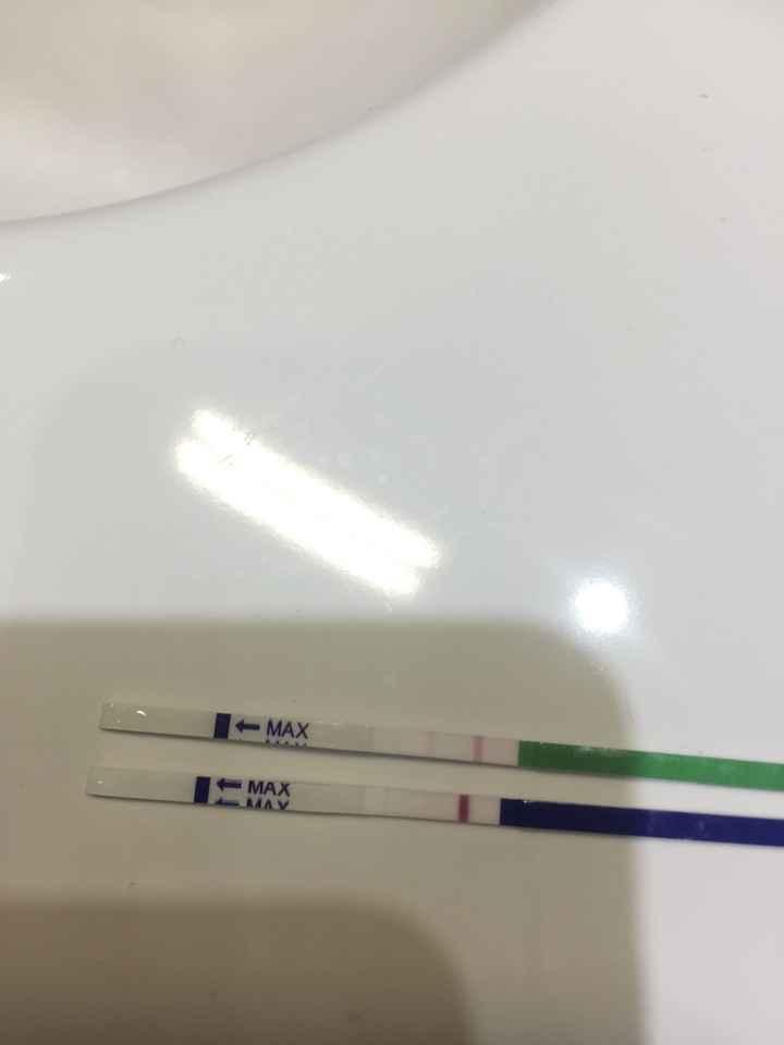 Test ovulazione vs test gravidanza - 2