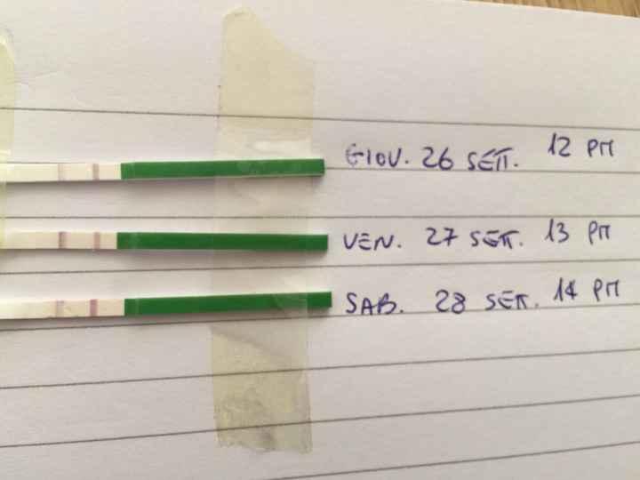 Test ovulazione positivo - 1