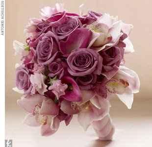rosa/lilla