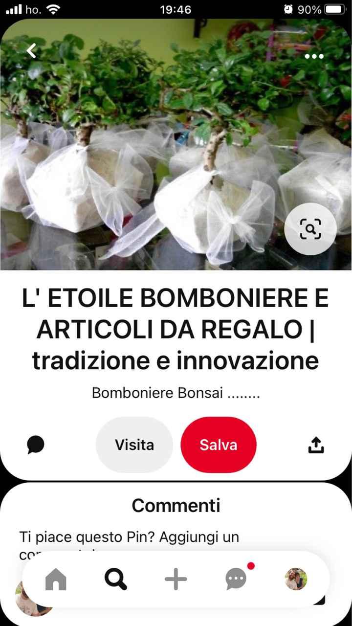 sos bomboniera bonsai - 3