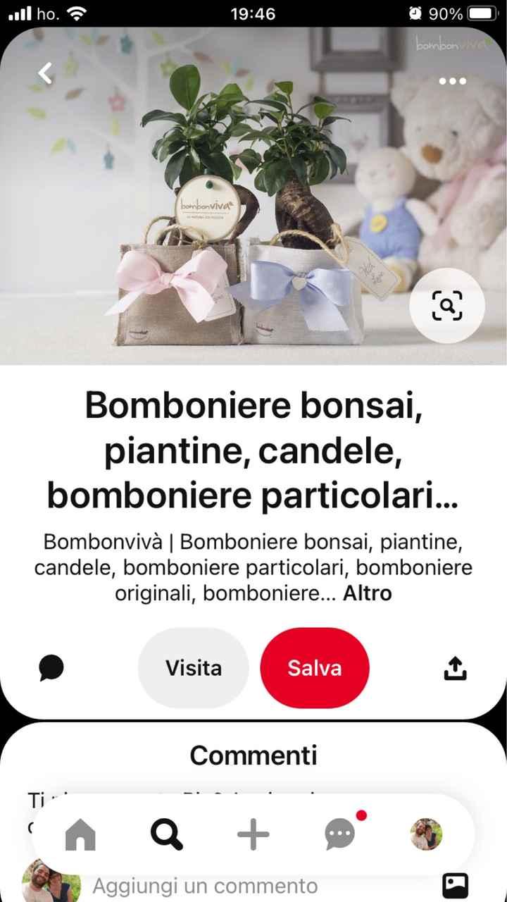 sos bomboniera bonsai - 4