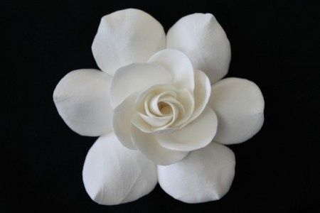 bella la gardeniaaaaaaaa