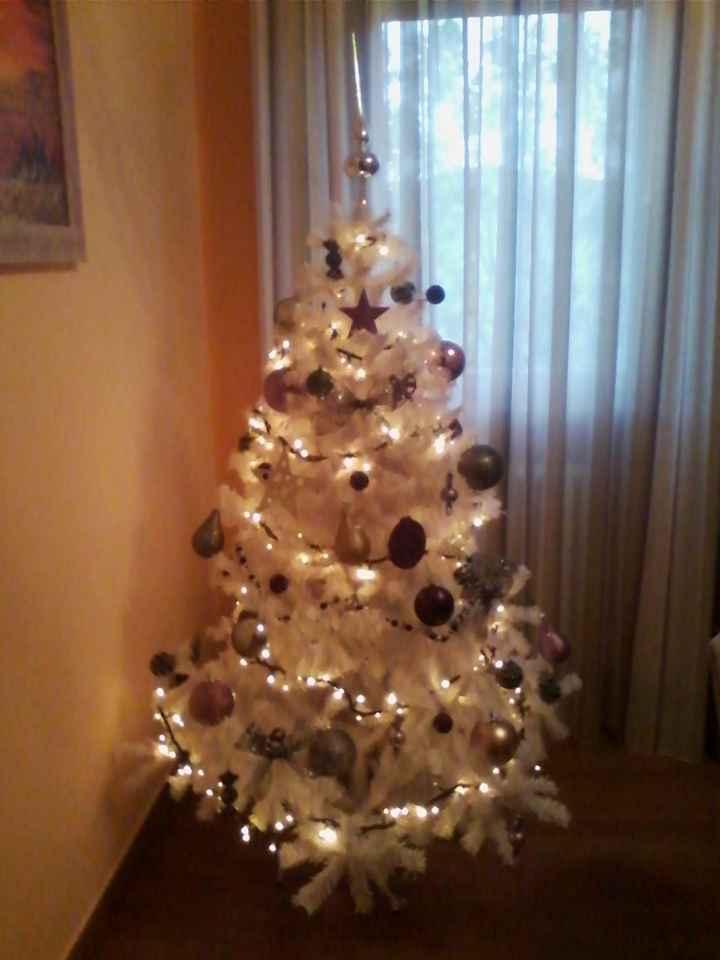 Il nostro primo albero di natale - 3
