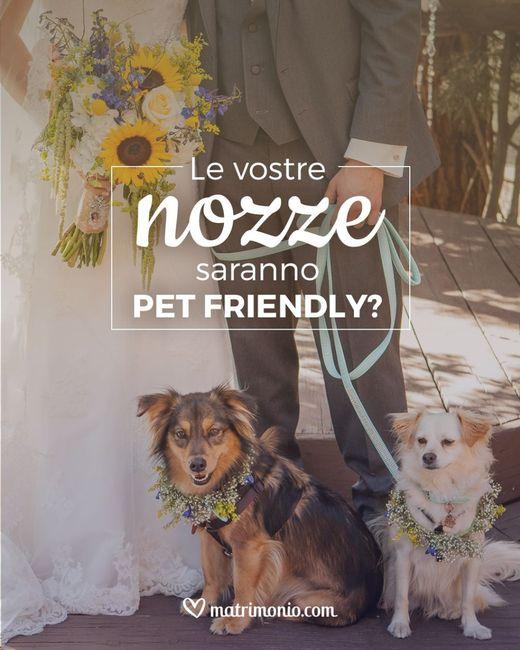 Le vostre nozze saranno pet friendly? 1