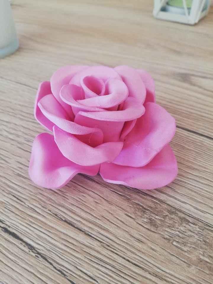 Rosa rosa 😅😅 - 1