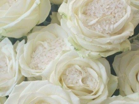 Alternativa ai coni porta riso le rose fai da te - Porta riso matrimonio ...