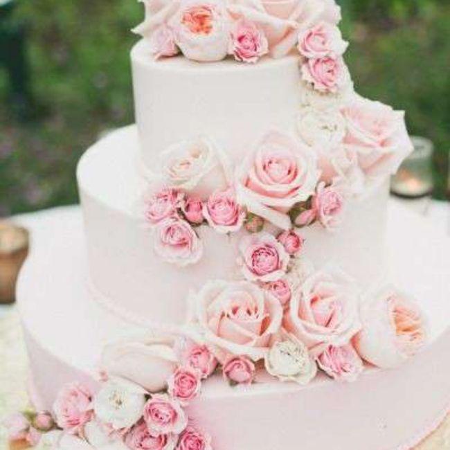 Quale torta? 2