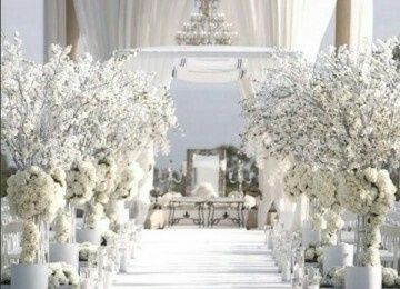 Matrimonio Tema Inverno : Matrimonio invernale organizzazione matrimonio forum matrimonio.com