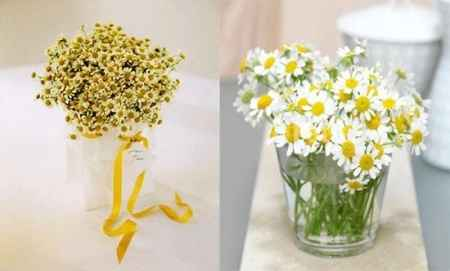 Fiori matrimonio aprile gialli/bianchi - 3